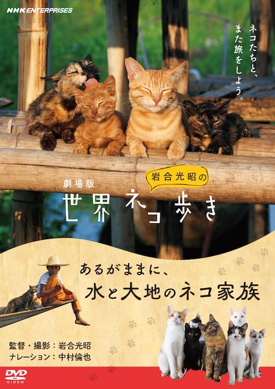 「劇場版 岩合光昭の世界ネコ歩き あるがままに、水と大地のネコ家族」DVD